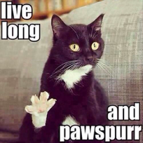"Meme of a cat with its toes spread out, and the text ""live long and pawspurr""."